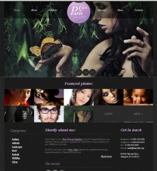 Free-Website-Template4