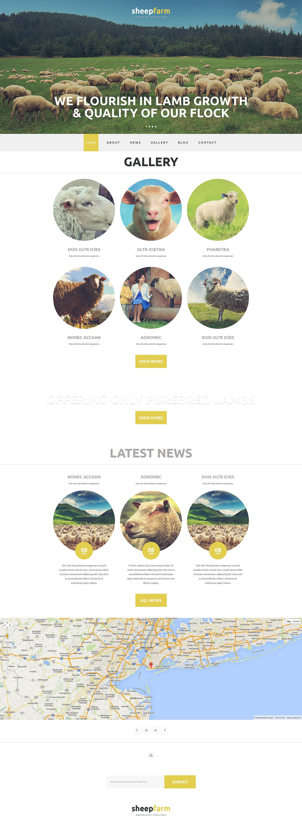 Sheep Farming Joomla Template